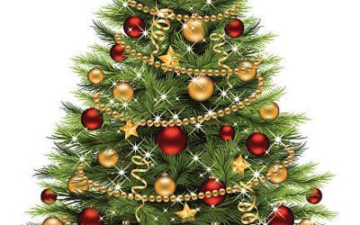 Treningstid jul og nyttår